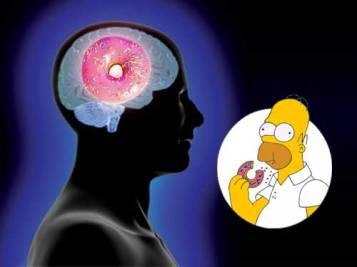 donut-brain