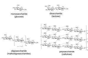 Chemical structures of types of sugars