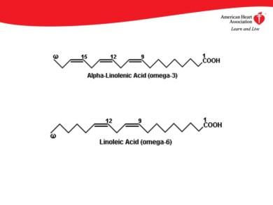 Linoleic and Linolenic acid