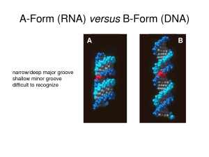 A and B forms of polynucleotides
